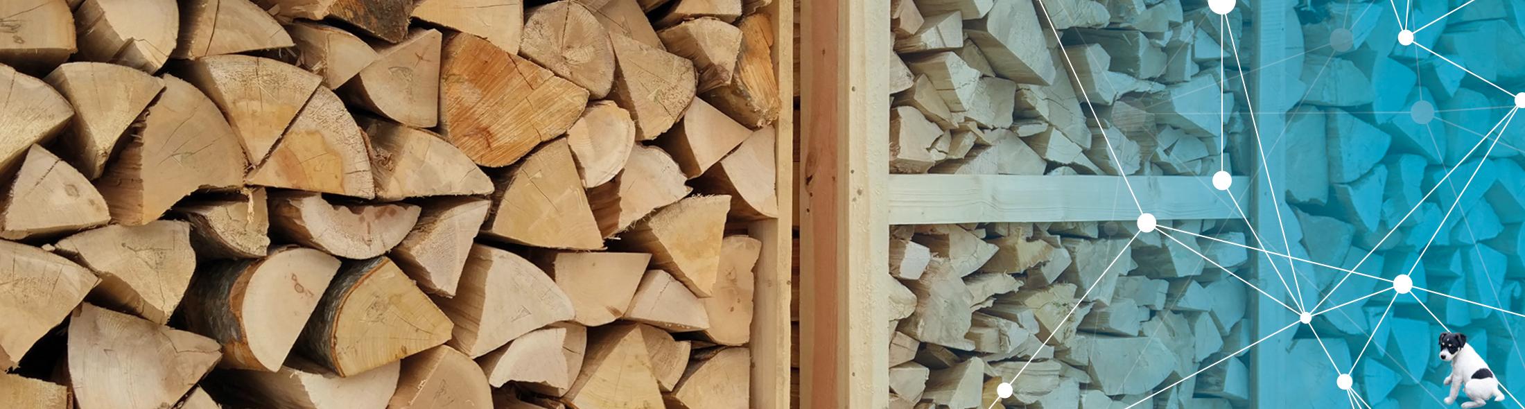 Holz gibt es von Schuster & Sohn