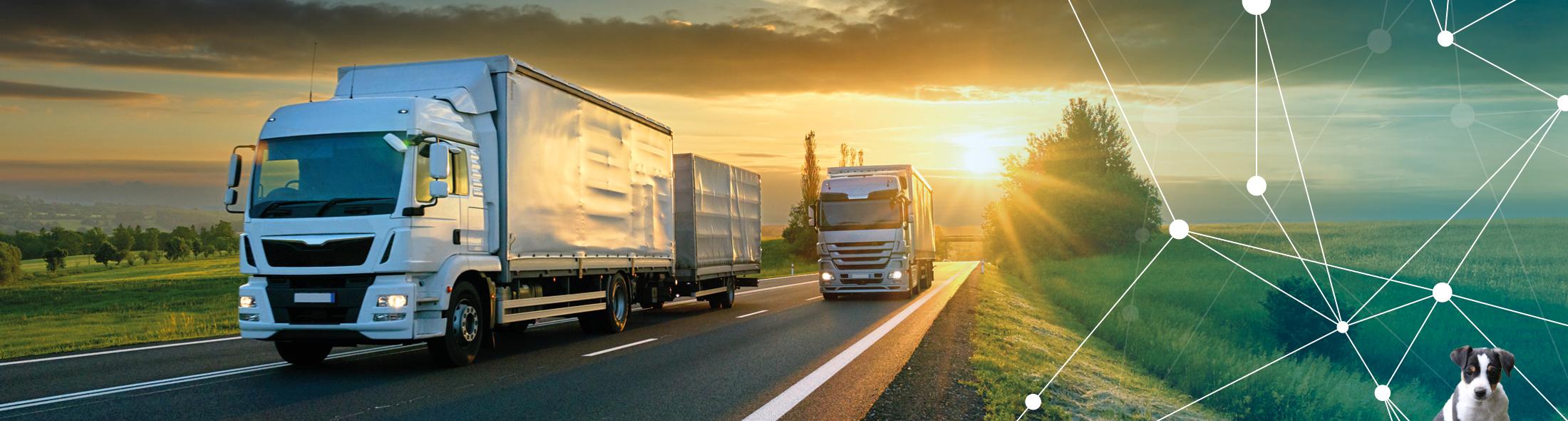 Schuster & Sohn - der Partner für alle Transportunternehmen und Fuhrparkbetreiber
